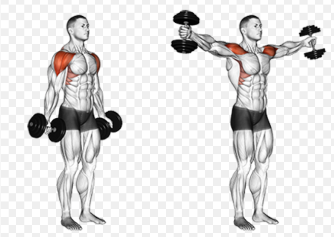 Shoulder recovery exercises