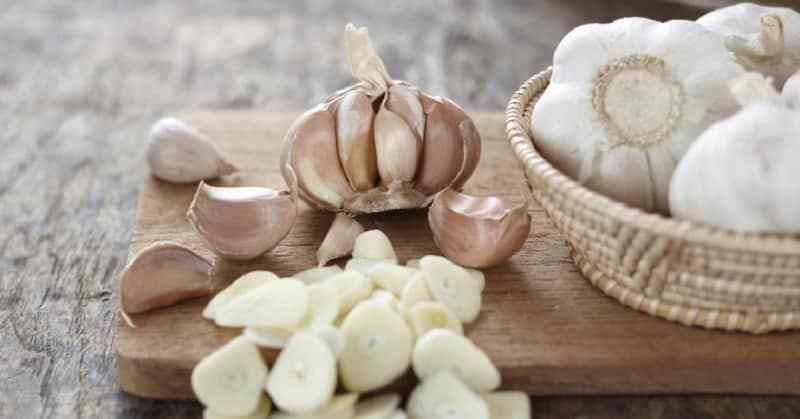 garlic diet that kills bacteria