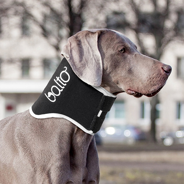 neck braces for dogs 2