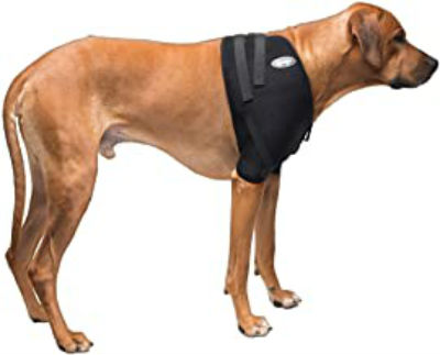Dog Shoulder Brace by Neo Sports Lab